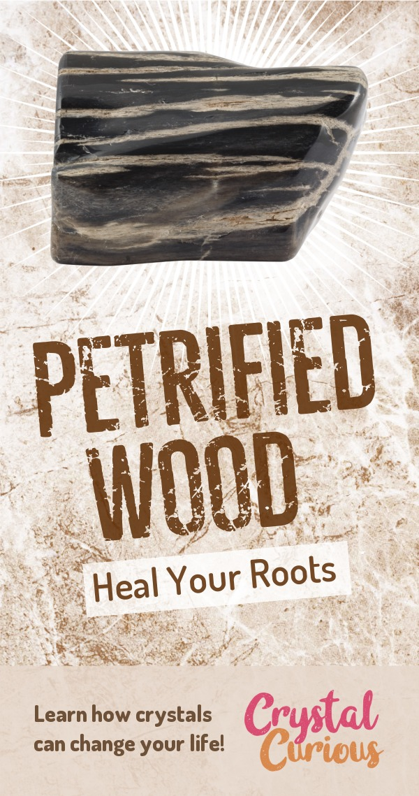 Petrified Wood Meaning & Healing Properties. Petrified wood can steady your nerves & help heal family patterns rooted in the past. Learn  about healing crystals for beginners and gemstones properties at CrystalCurious.com. Explore new age spirituality and learn crystal therapy and chakra healing. #crystalhealing #crystals #gemstones #energymedicine #energyhealing #newage #crystalcurious